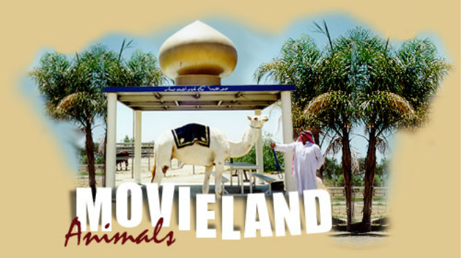 Movieland Animals